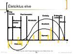 letciklus elve1