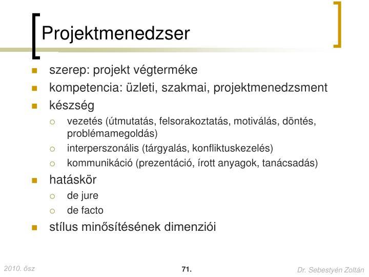 Projektmenedzser