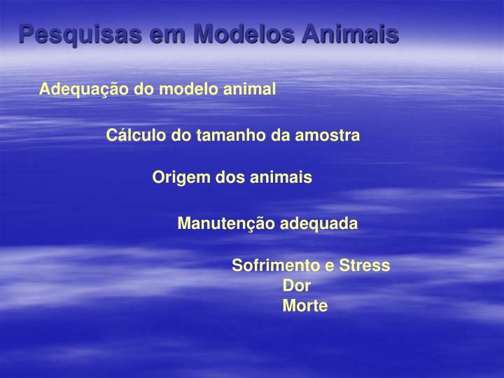 Pesquisas em Modelos Animais
