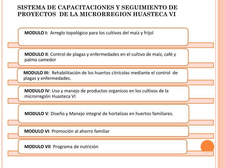 SISTEMA DE CAPACITACIONES Y SEGUIMIENTO DE PROYECTOS  DE LA MICRORREGION HUASTECA VI