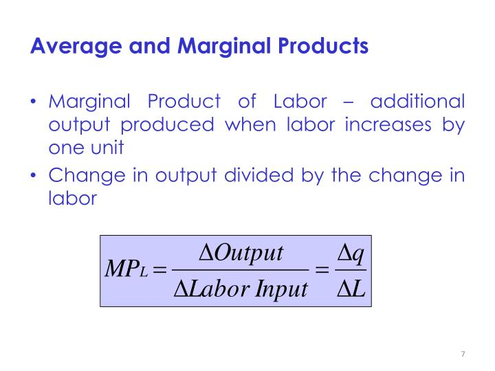 Average and Marginal Products