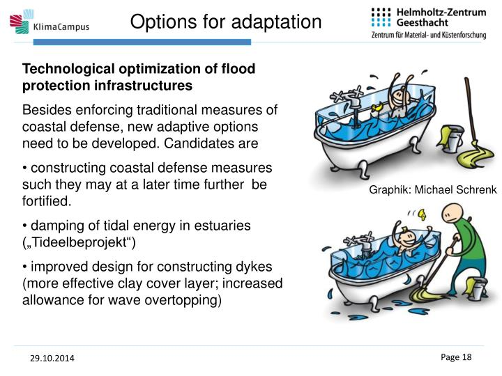 Options for adaptation