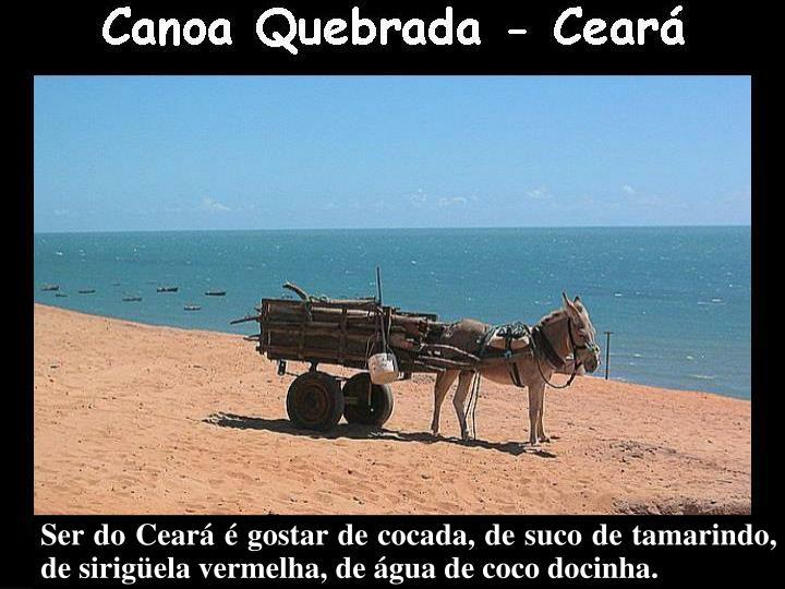 Ser do Ceará é gostar de cocada, de suco de tamarindo,   de sirigüela vermelha, de água de coco docinha.