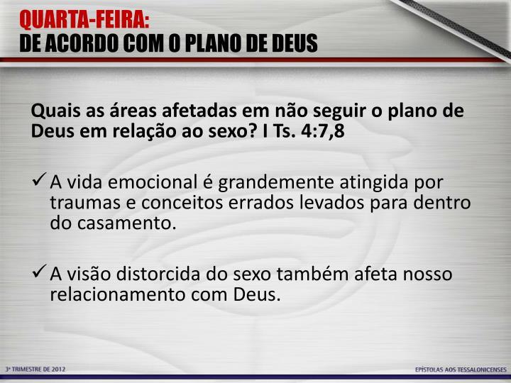 QUARTA-FEIRA: