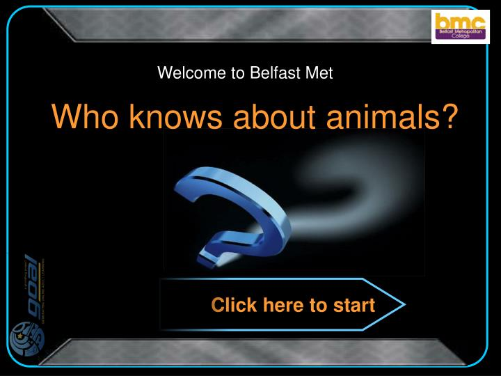 Who knows about animals
