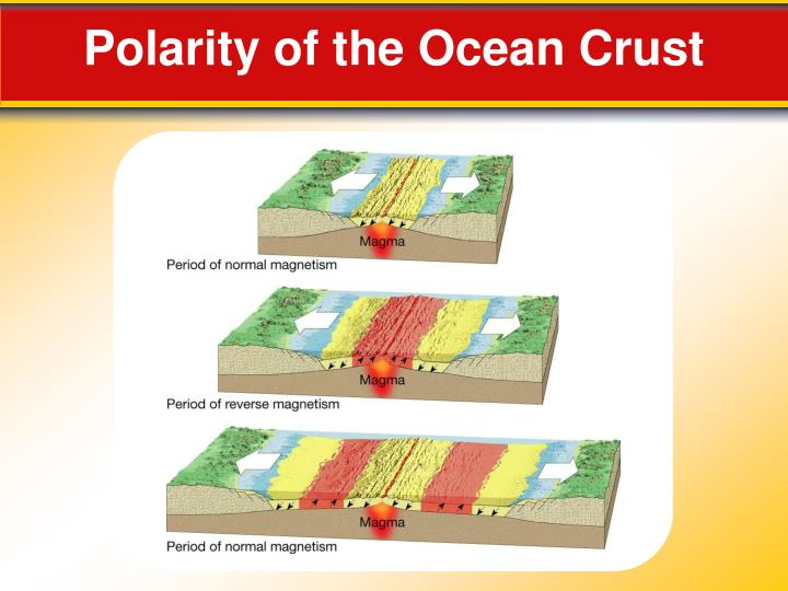 Polarity of the Ocean Crust