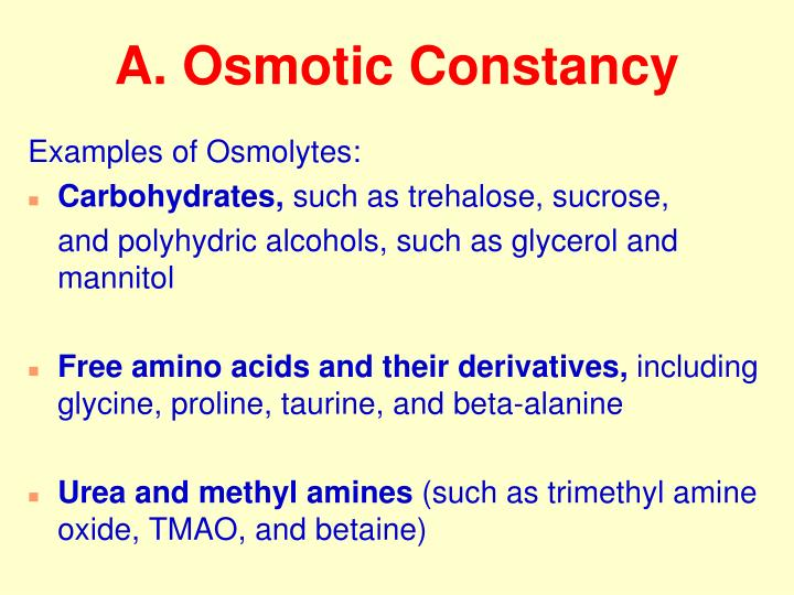 A. Osmotic Constancy