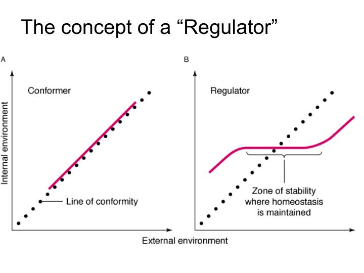 "The concept of a ""Regulator"""
