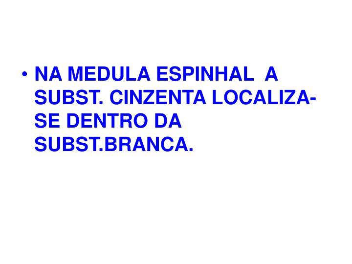 NA MEDULA ESPINHAL  A SUBST. CINZENTA LOCALIZA-SE DENTRO DA SUBST.BRANCA.