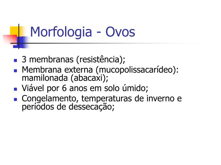 Morfologia - Ovos