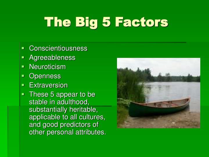 The Big 5 Factors