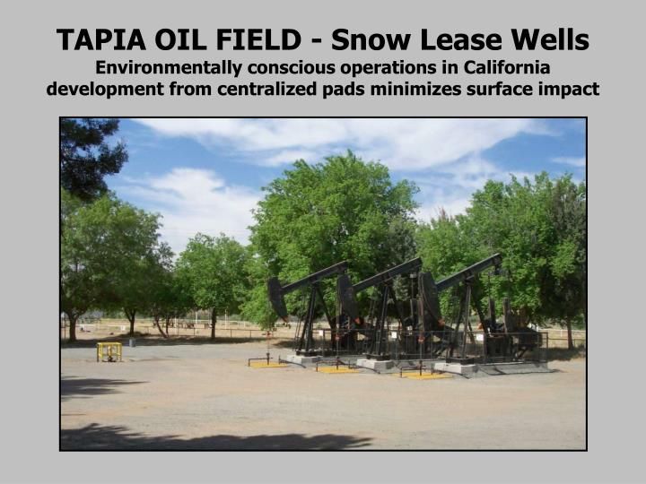 TAPIA OIL FIELD - Snow Lease Wells