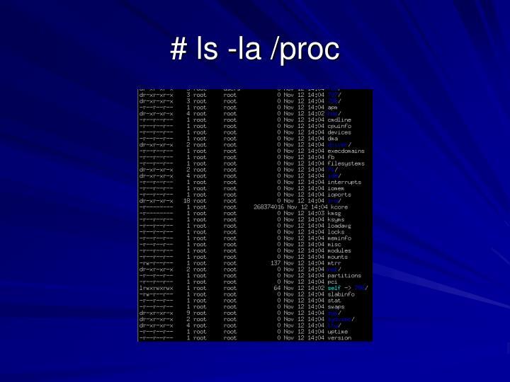 # ls -la /proc