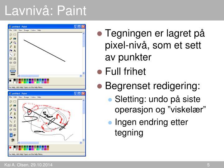 Lavnivå: Paint