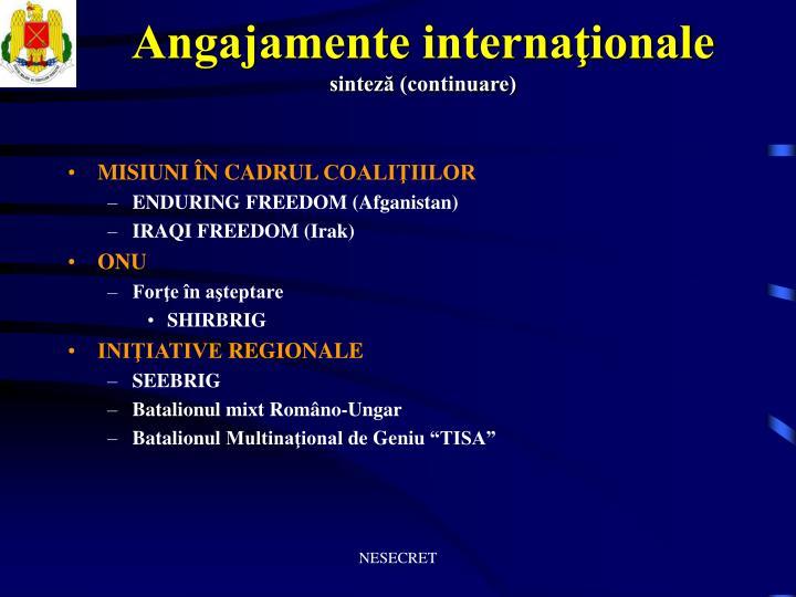 Angajamente internaţionale