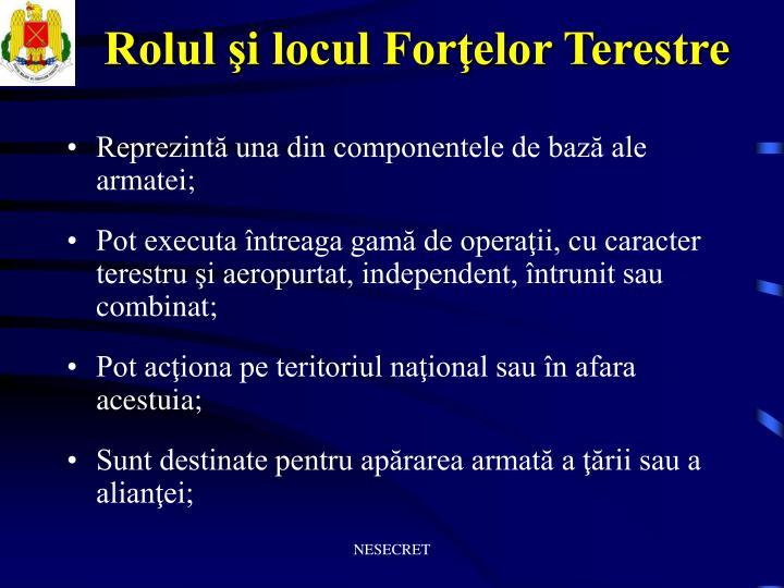 Rolul şi locul Forţelor Terestre