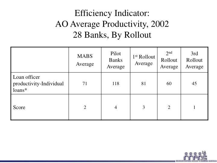 Efficiency Indicator: