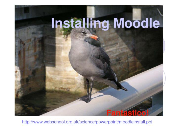 Installing Moodle