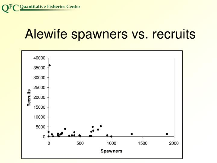 Alewife spawners vs. recruits