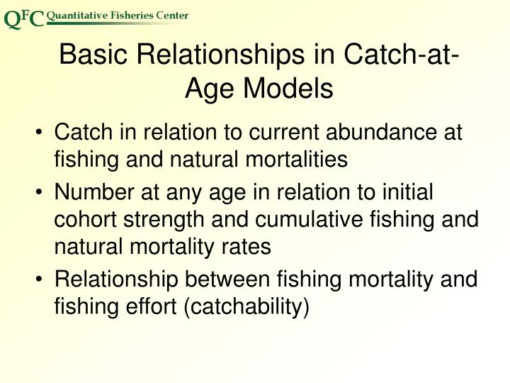 Basic Relationships in Catch-at-Age Models