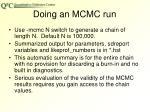 doing an mcmc run