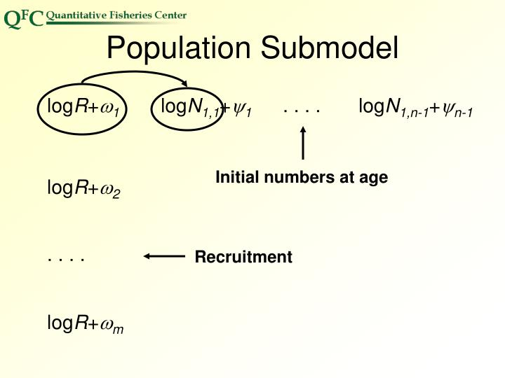 Initial numbers at age
