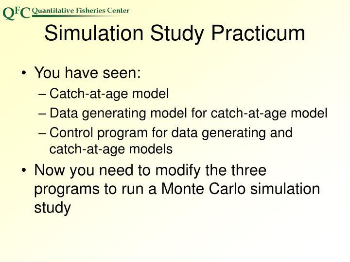 Simulation Study Practicum