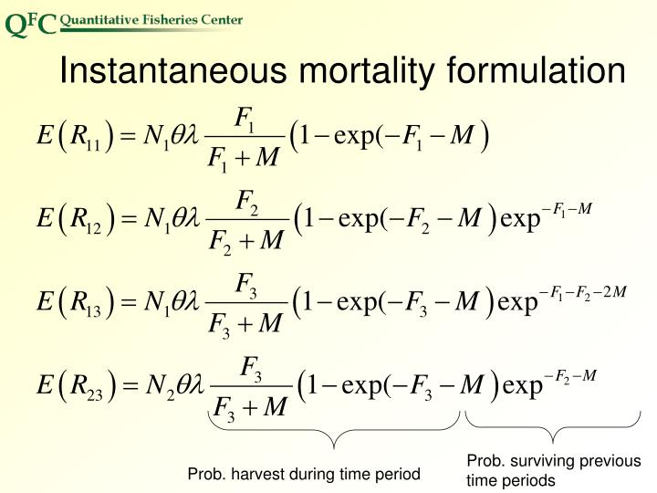 Instantaneous mortality formulation