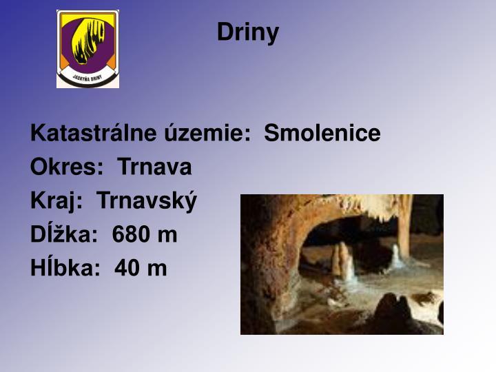 Driny