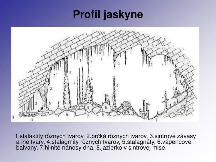 Profil jaskyne