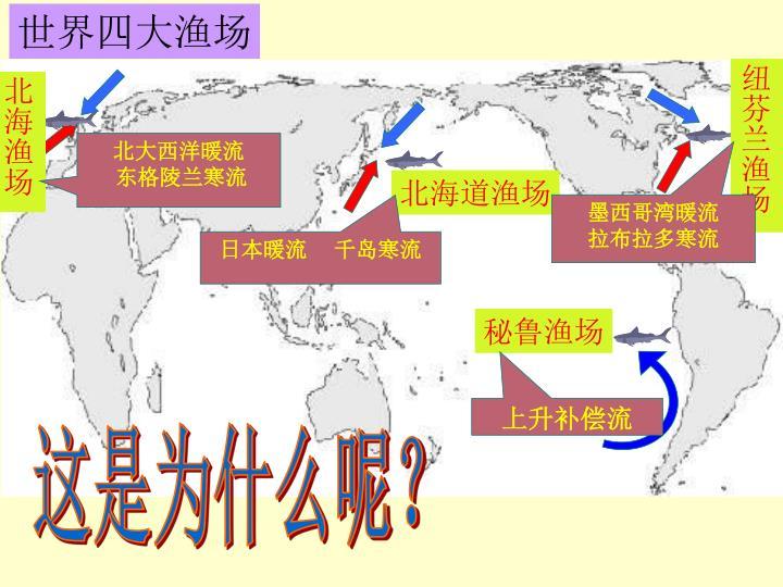 世界四大渔场