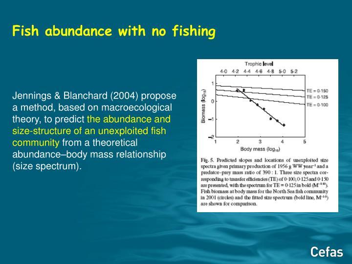 Fish abundance with no fishing
