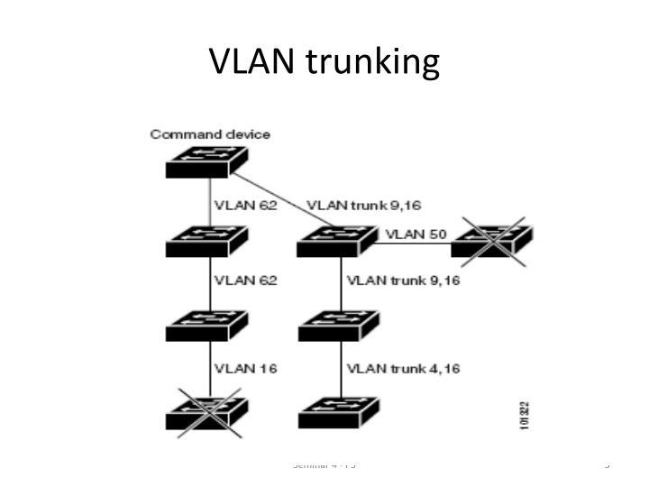 VLAN trunking