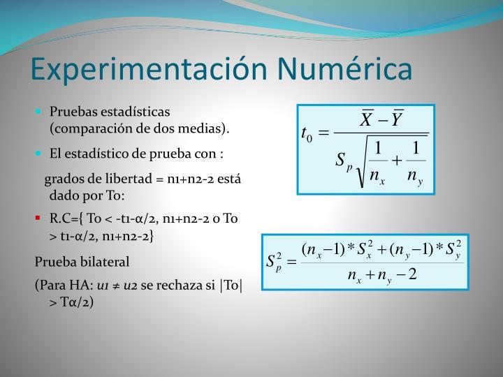 Experimentación Numérica