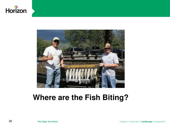 Where are the Fish Biting?