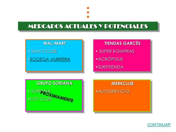 MERCADOS ACTUALES Y POTENCIALES