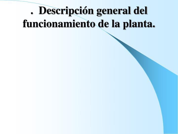 .  Descripción general del funcionamiento de la planta.