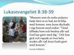 lukasevangeliet 8 38 39