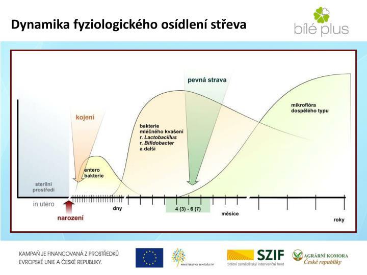Dynamika fyziologického osídlení střeva