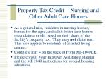 property tax credit nursing and other adult care homes