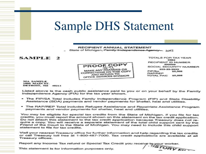 Sample DHS Statement