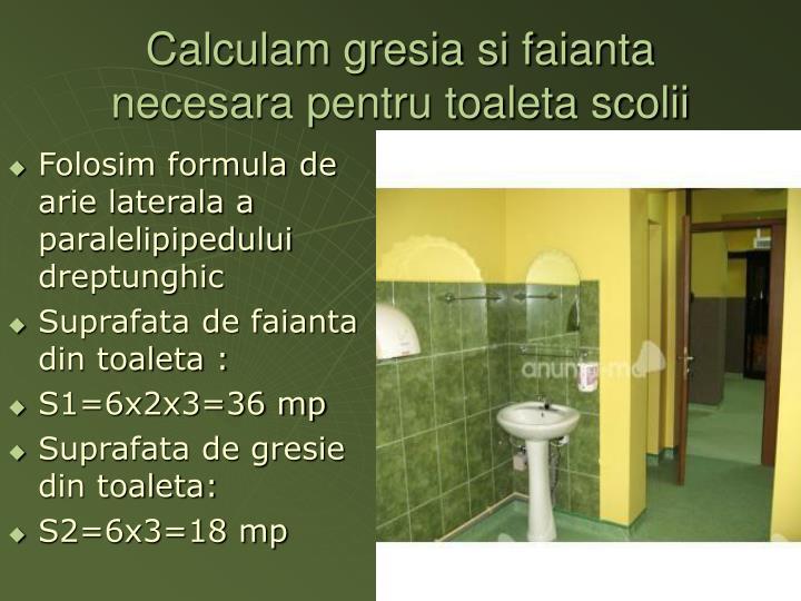 Calculam gresia si faianta necesara pentru toaleta scolii