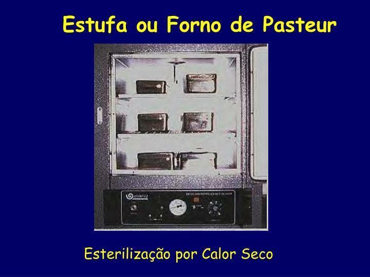 Estufa ou Forno de Pasteur