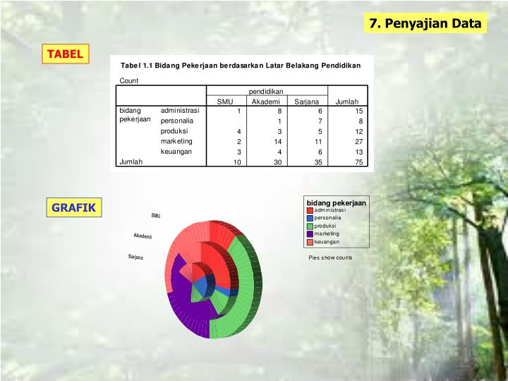 7. Penyajian Data