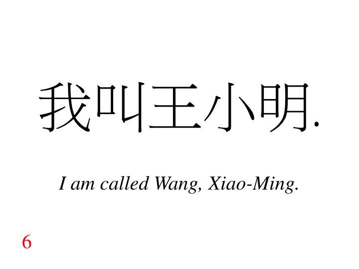 我叫王小明