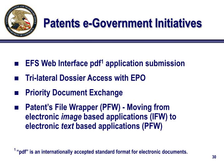 Patents e-Government Initiatives