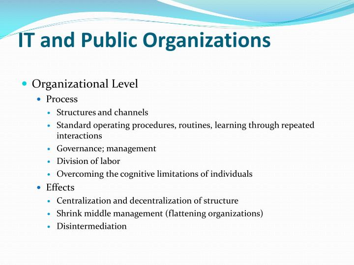 IT and Public Organizations