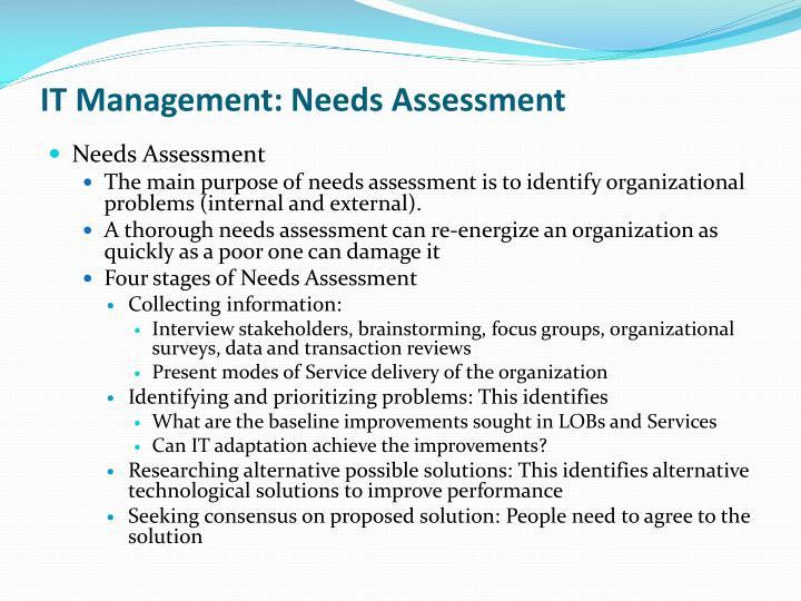 IT Management: Needs Assessment