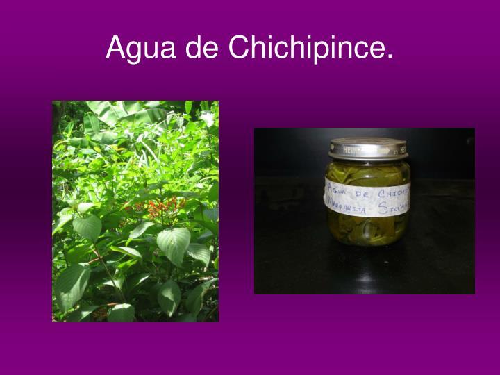 Agua de Chichipince.