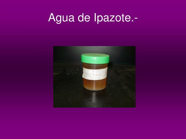 Agua de Ipazote.-